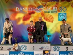 MVP_Bratislava_BIG